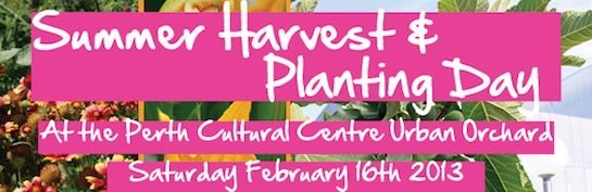 Perth Cultural Centre Summer Harvest & Planting Day
